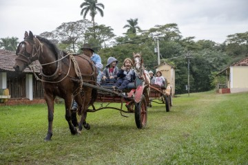 Alunos do 1º ano do Fundamental I visitam Zoológico e Fazenda em São Carlos - SP